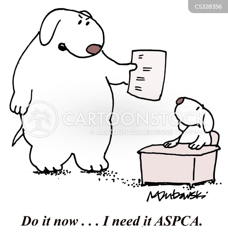 american society for the prevention of cruelty to animals Essay Examples