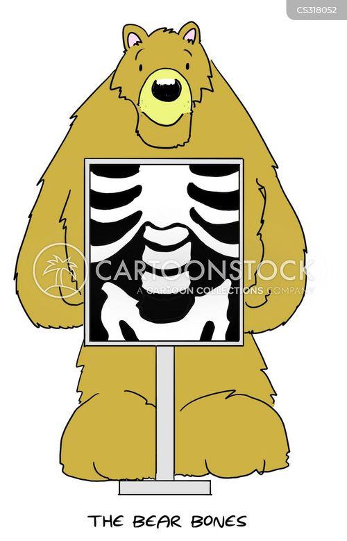 XRay Cartoons  CE4RTcom