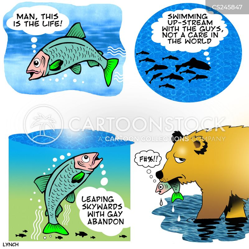 Funny salmon cartoon - photo#11