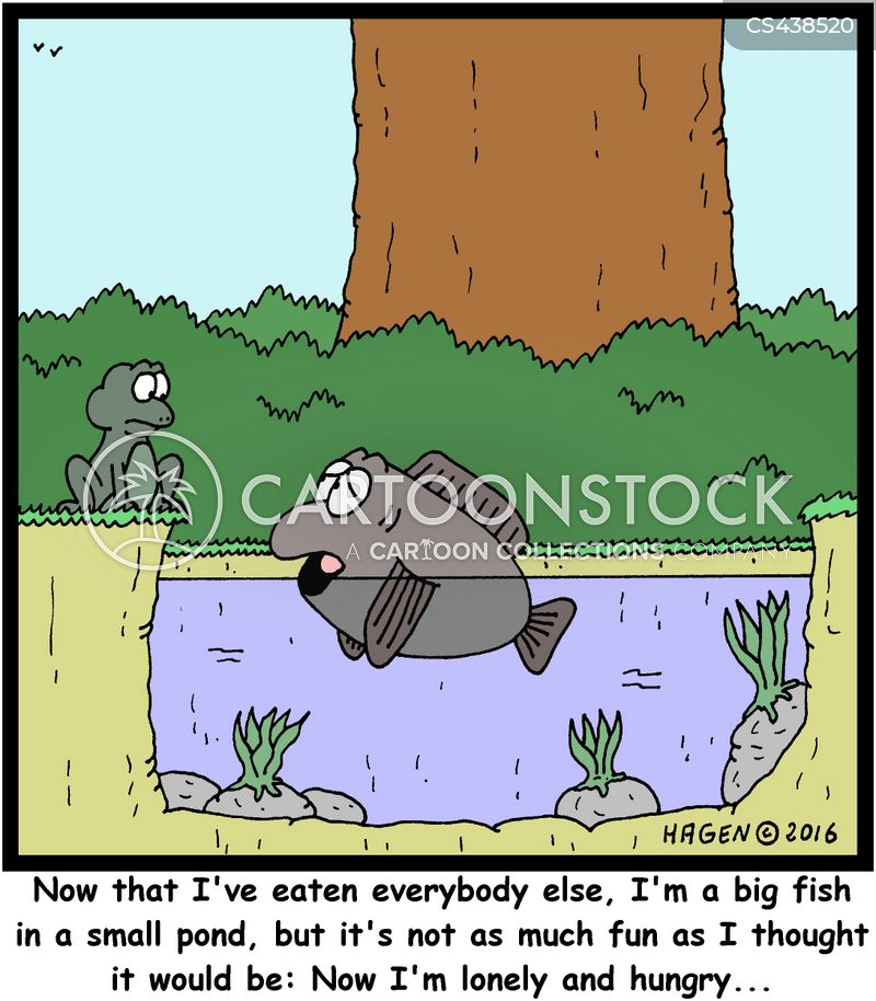 Small ponds cartoons and comics funny pictures from for Big fish little pond