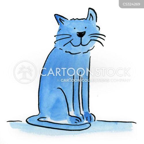 kitten formula petsmart