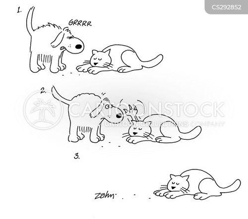 Dog Scares Cat Cartoon