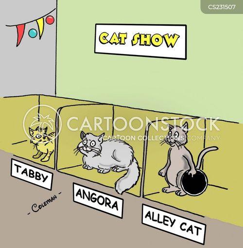 Cat Show cartoons, Cat Show cartoon, funny, Cat Show picture, Cat Show ...