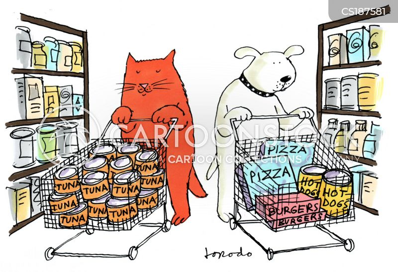 Cat Food At Supermarkets