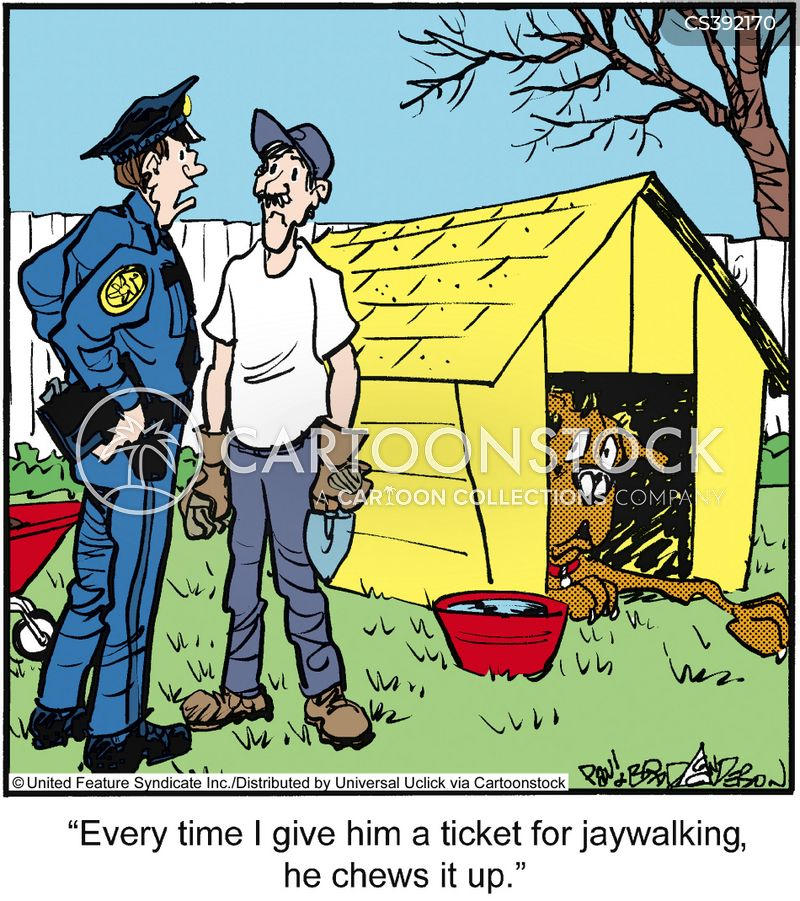 Jaywalking Cartoons And Comics Funny Pictures From