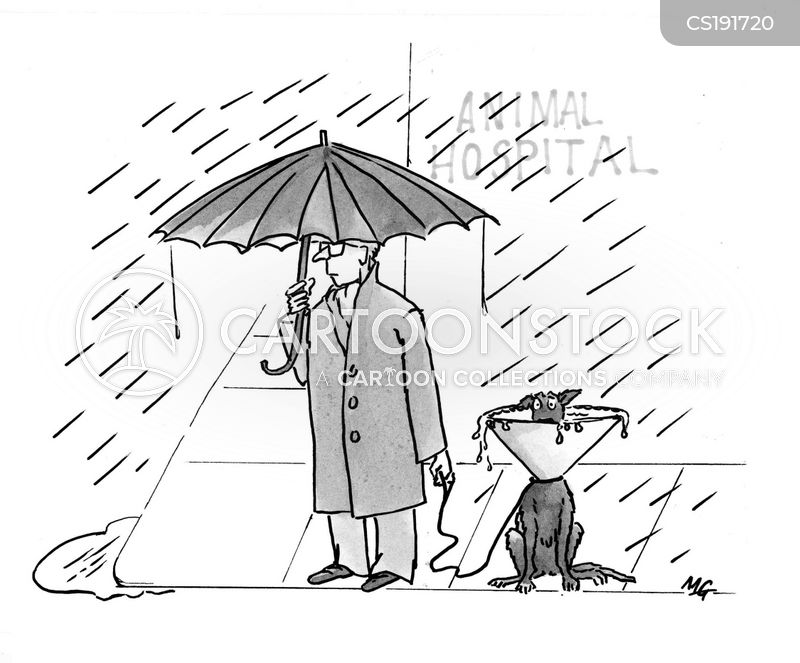 Heavy Rain Cartoons And Comics Funny Pictures From
