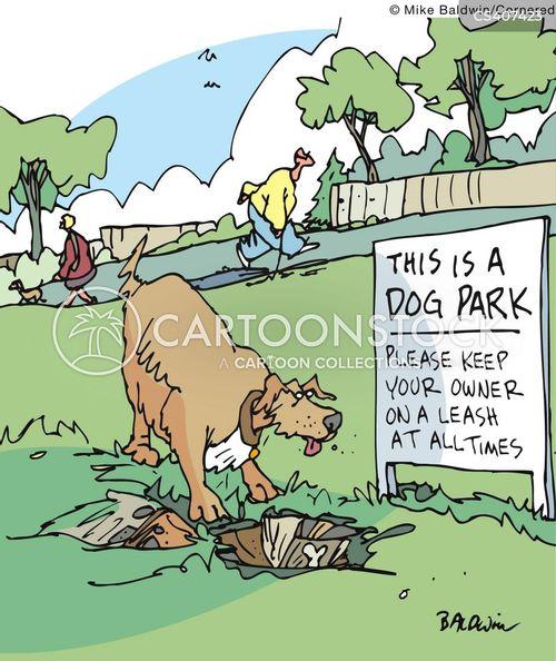 Cartoon Dog Walker In Park