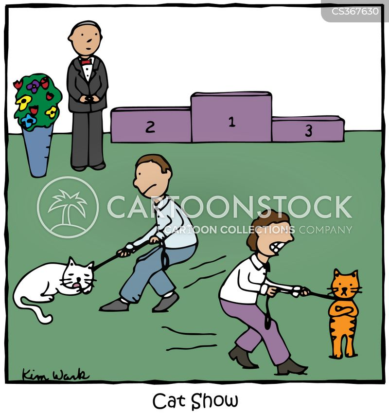Purecartoon pictures to pin on pinterest pinsdaddy - Cat cartoon shows ...