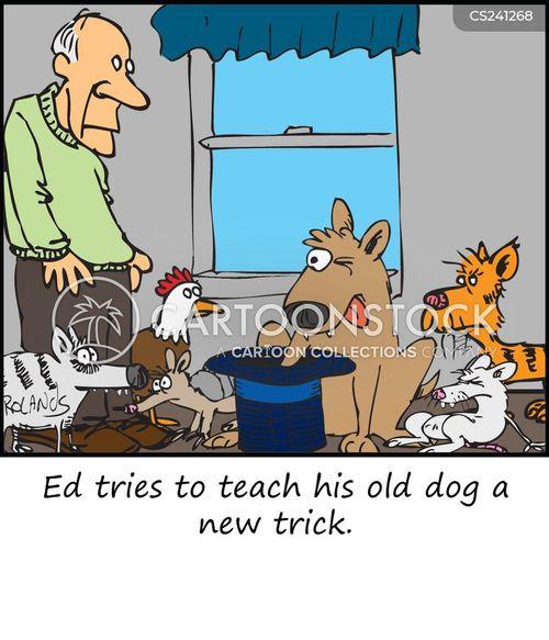 You Can Teach An Old Dog New Tricks Psychology
