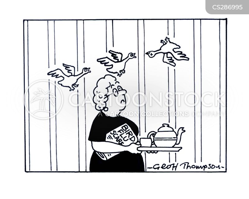 Funny Cartoons Birds Bird Flu Scares Cartoon 1 of 1