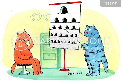 animals-eye-eyesight-eye_test-eye_doctor-optician-jdon2_low.jpg