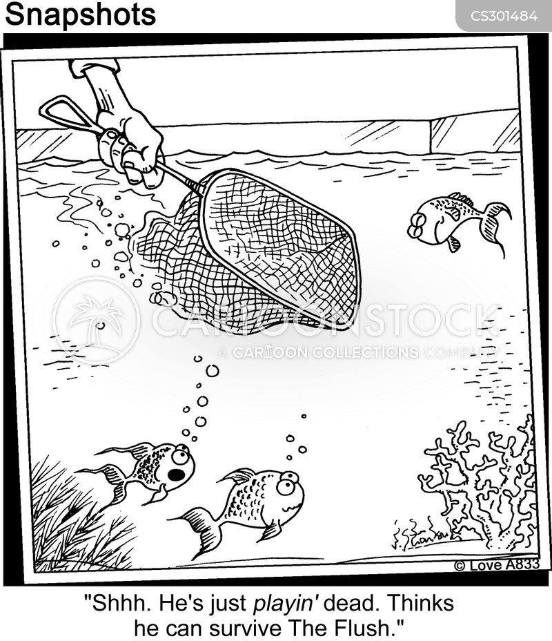 Dead Fish Cartoons and Comics - funny pictures from ...