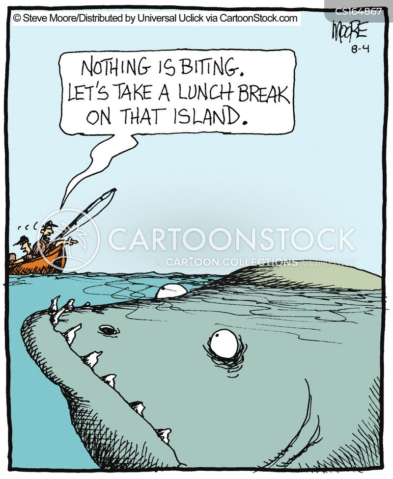 Shark cartoons and comics funny pictures from cartoonstock for What time will the fish bite today