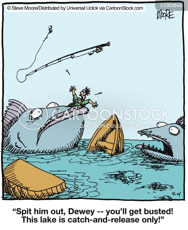 Catch And Release Cartoons And Comics Funny Pictures