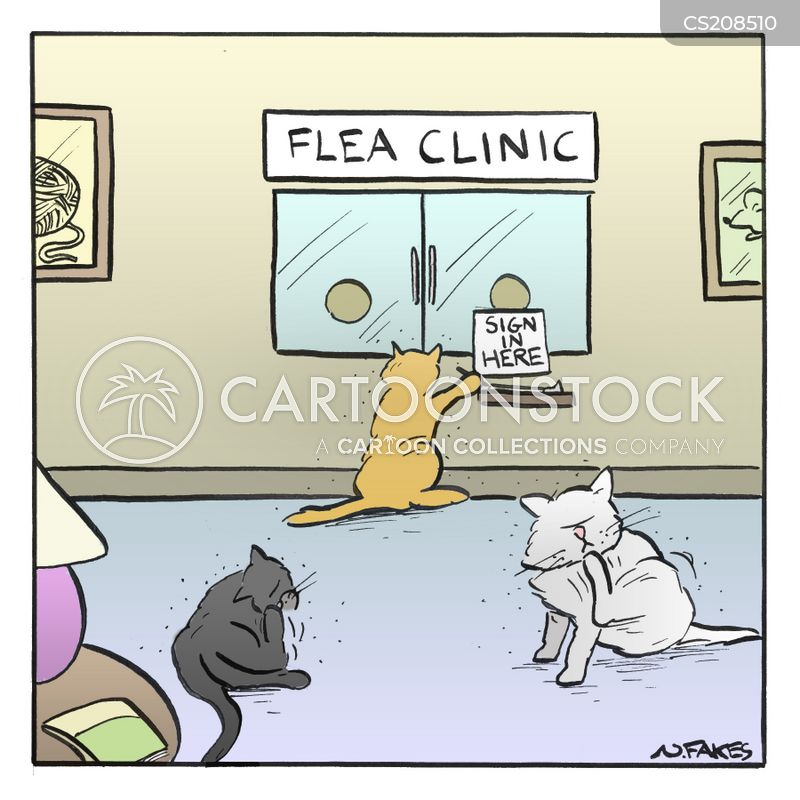 Flea Bite Cartoons And Comics Funny Pictures From