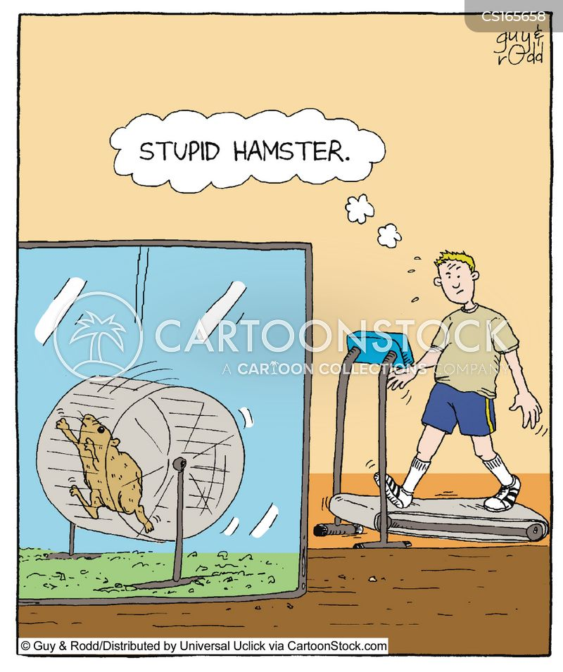 Gym Cartoons and Comics - funny pictures from CartoonStock