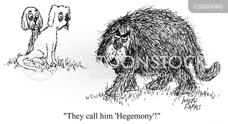Animals hegemony dogs hairy dogs dog names dogs names jfa0954 low jpg