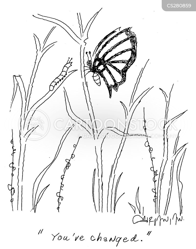 Schmetterling Cartoon, Schmetterling Cartoons, Schmetterling Bild, Schmetterling Bilder, Schmetterling Karikatur, Schmetterling Karikaturen, Schmetterling Illustration, Schmetterling Illustrationen, Schmetterling Witzzeichnung, Schmetterling Witzzeichnungen