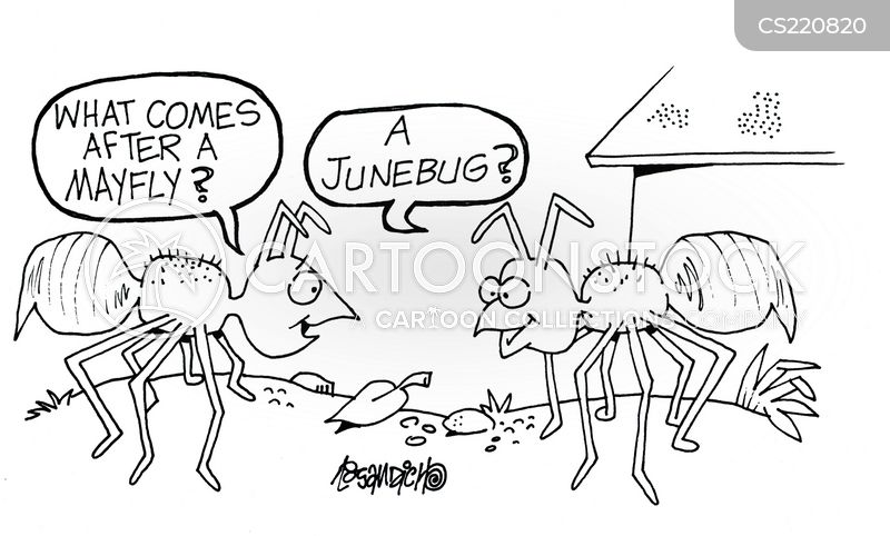 June bug cartoon - photo#8