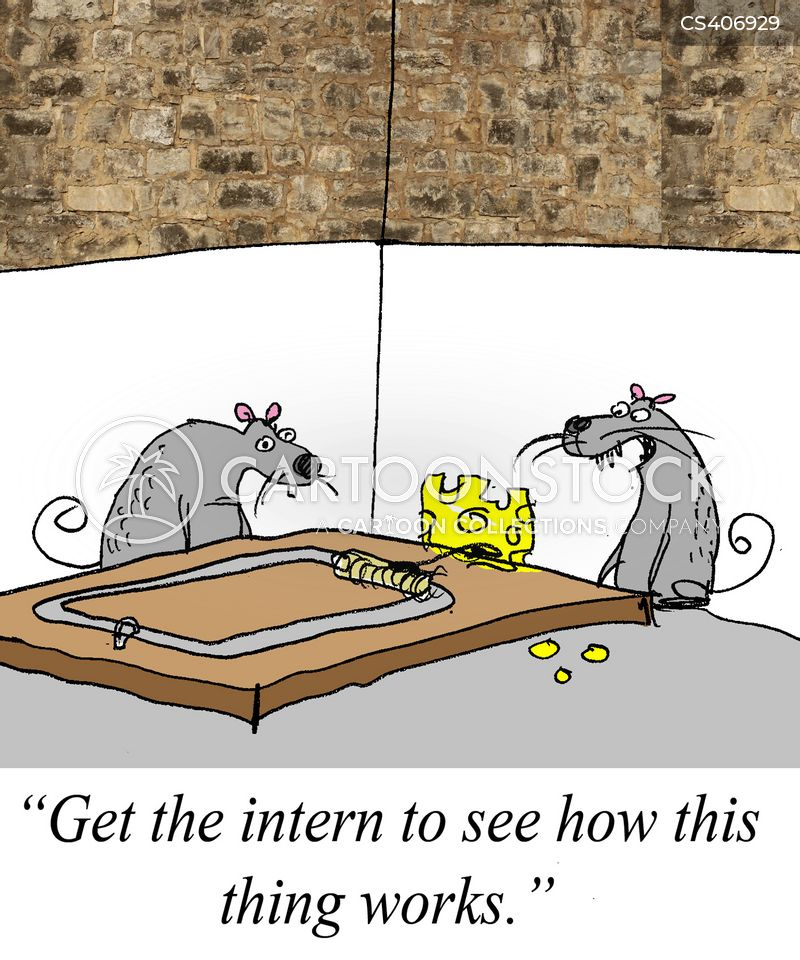 clever mouse trap funny - photo #21