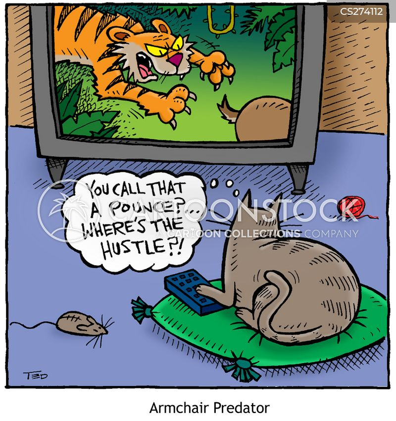animal documentary cartoons and comics   funny pictures