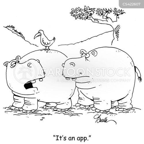 oxpecker bird and hippopotamus relationship trust