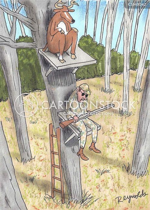 Deer hunts cartoons and comics funny pictures from cartoonstock