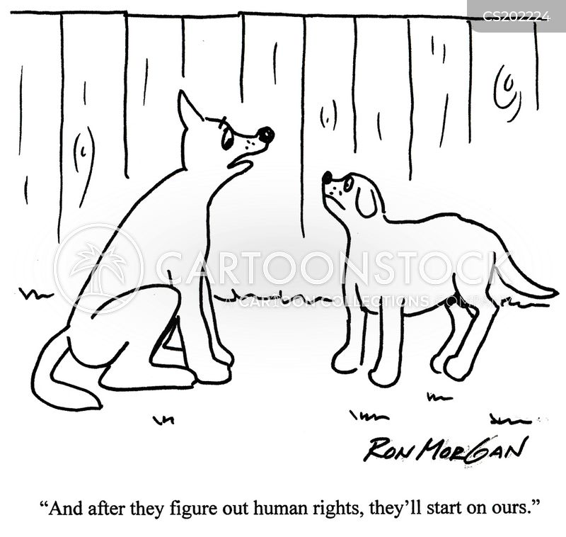 equal rights for animals 2 Advocates of animal rights as well as activists for animal liberation hold the view that to deny the most basic needs of sentient creatures—such as the avoidance of.