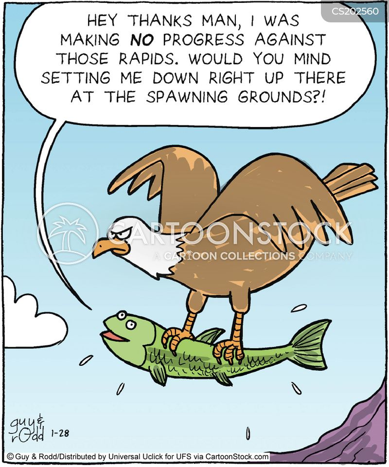 Funny salmon cartoon - photo#2