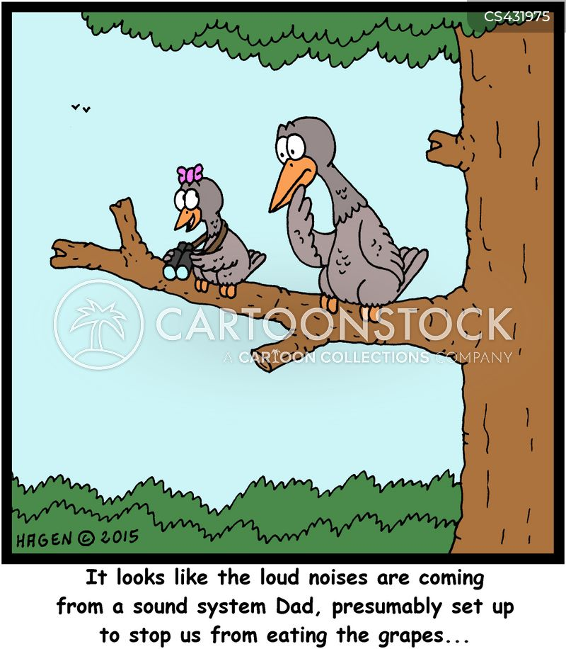 bird scarers cartoons and comics   funny pictures from