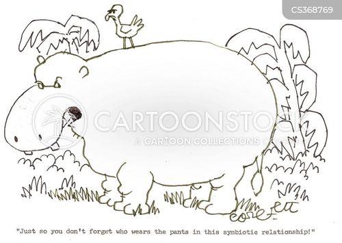 biology cartoon symbiosis by - photo #45
