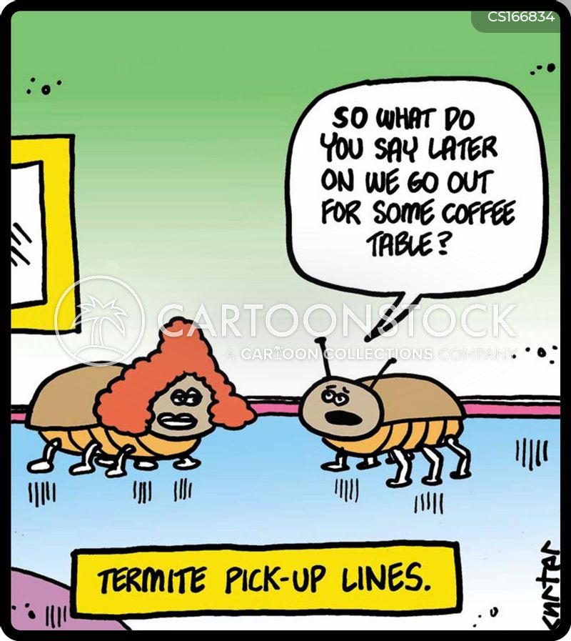 Termite Cartoons And Comics Funny Pictures From Cartoonstock