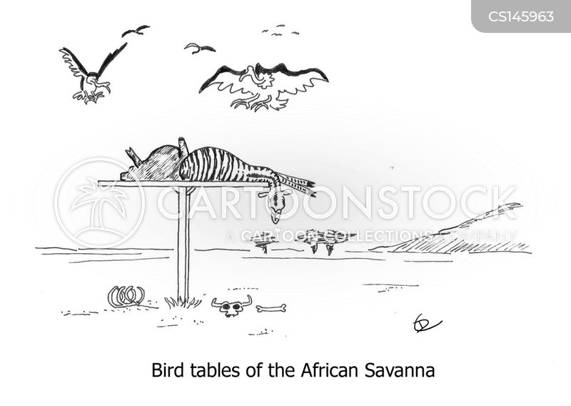 Safaris Cartoon, Safaris Cartoons, Safaris Bild, Safaris Bilder, Safaris Karikatur, Safaris Karikaturen, Safaris Illustration, Safaris Illustrationen, Safaris Witzzeichnung, Safaris Witzzeichnungen