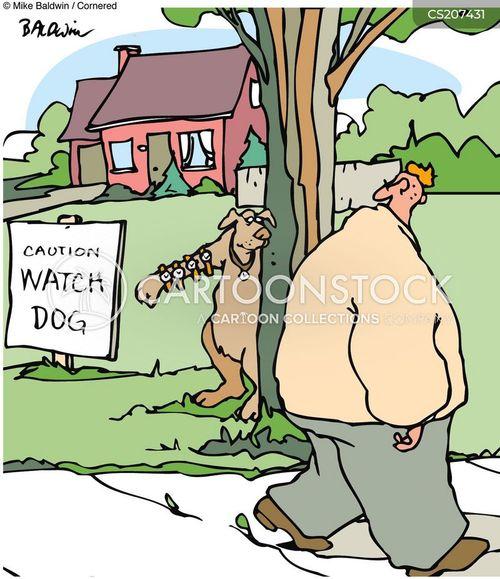 animals-watch_dog-guard_dog-watch_dogs-g