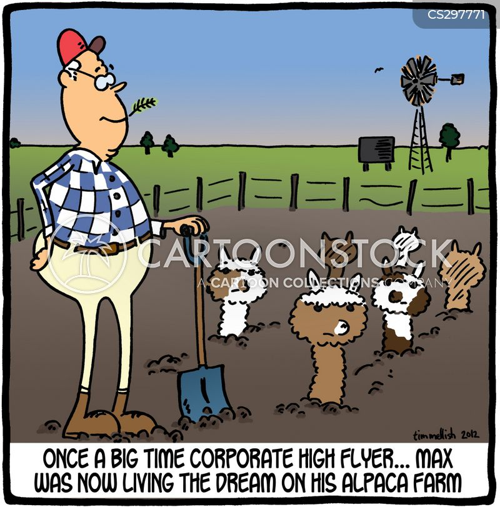 Alpacas Cartoons and Comics - funny pictures from CartoonStock