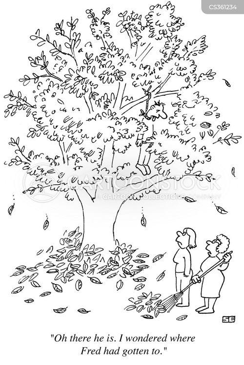 death-hang-hanging-missing-fall-tree-sea0744_low.jpg