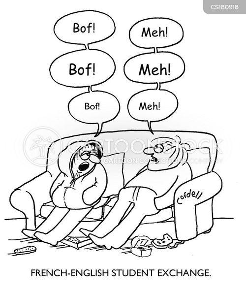english idioms for essays