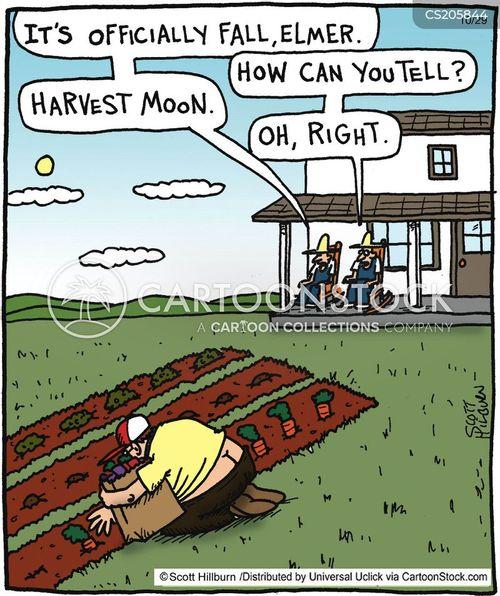 Harvesting Cartoons And Comics
