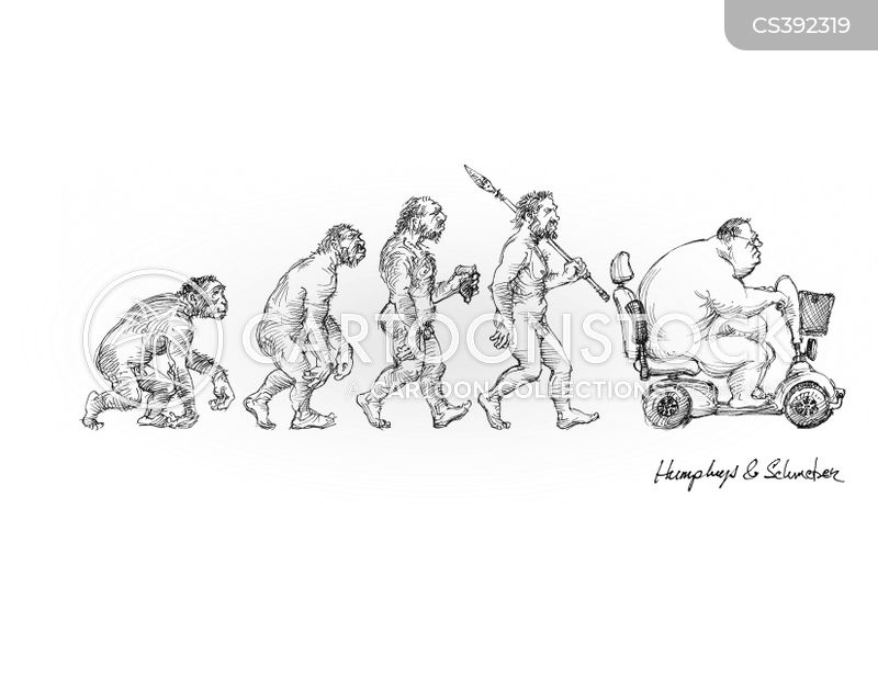 evolution of cinderella essay In his essay on fairy-stories, j as when george cruikshank rewrote cinderella in 1854 the walt disney company has had a significant impact on the evolution.