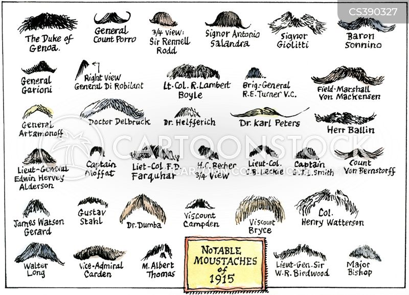 funny mustache names | How to Grow a Moustache