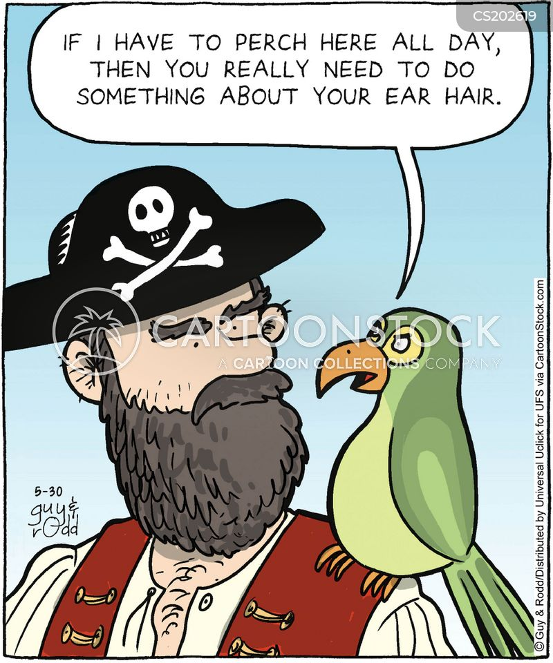 Pirate Ships Cartoons And Comics Funny Pictures From