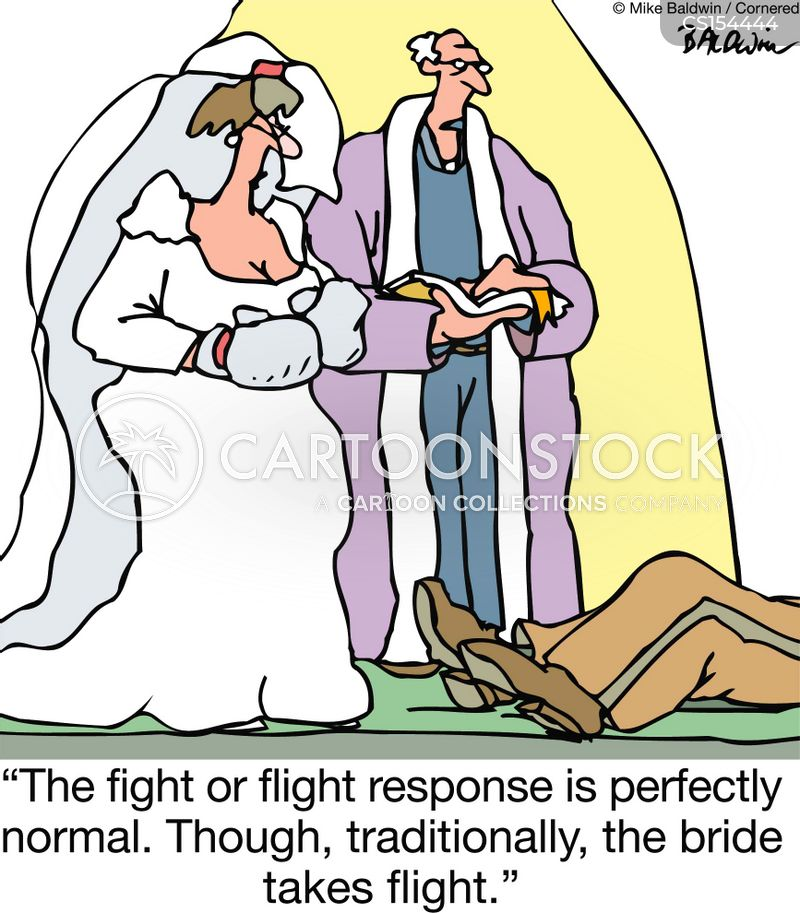 marriage relationships fight or flight fight brides grooms weddings