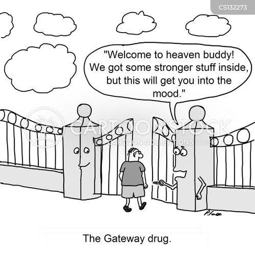 bible gateway mobile download