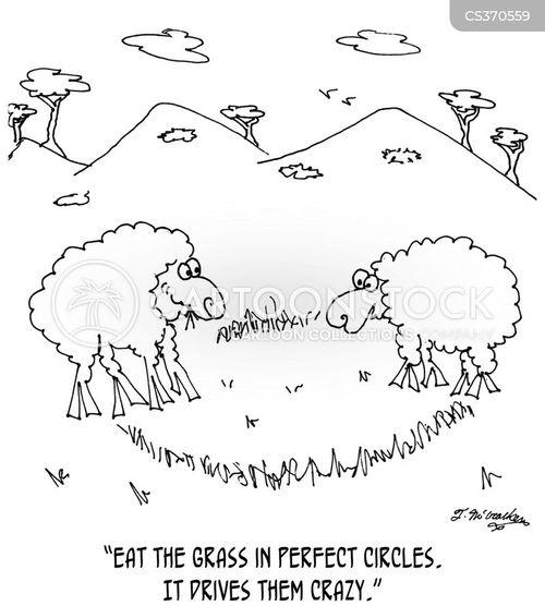 Crop Circle Cartoons And Comics