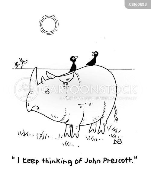 how to draw a rhino cartoon