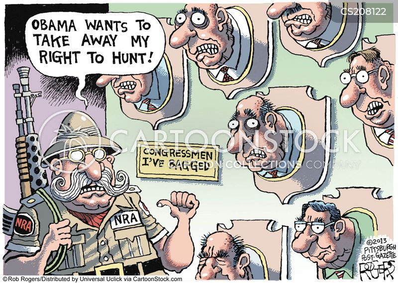 2nd Amendment Cartoons And Comics Funny Pictures From