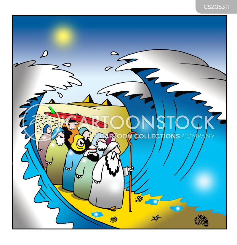 Surfbretter Cartoon, Surfbretter Cartoons, Surfbretter Bild, Surfbretter Bilder, Surfbretter Karikatur, Surfbretter Karikaturen, Surfbretter Illustration, Surfbretter Illustrationen, Surfbretter Witzzeichnung, Surfbretter Witzzeichnungen