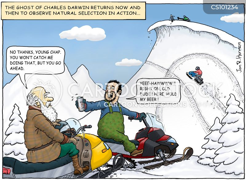 Sled Cartoons And Comics Funny Pictures From Cartoonstock